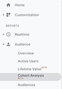 Imagem Cohort Google Analytics Menu